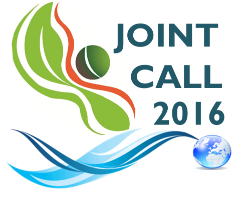 Joint Call 2016